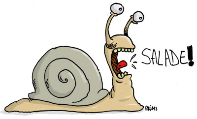 Dessin Escargot Affame Prims